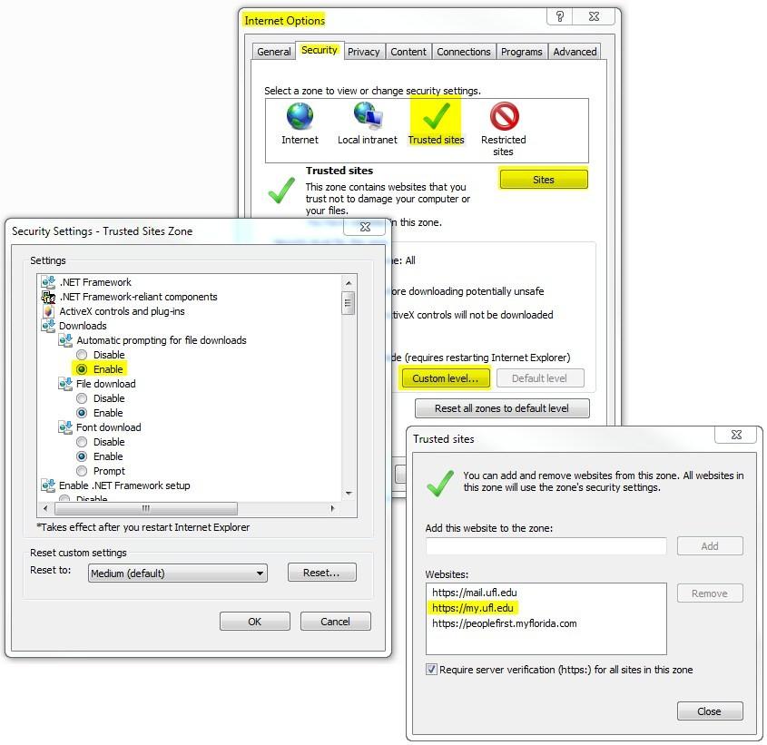 Internet Explorer Trusted Sites Options